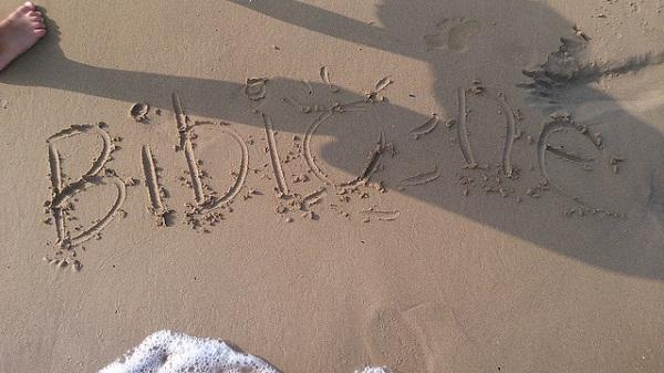 Bibione scritta sabbia