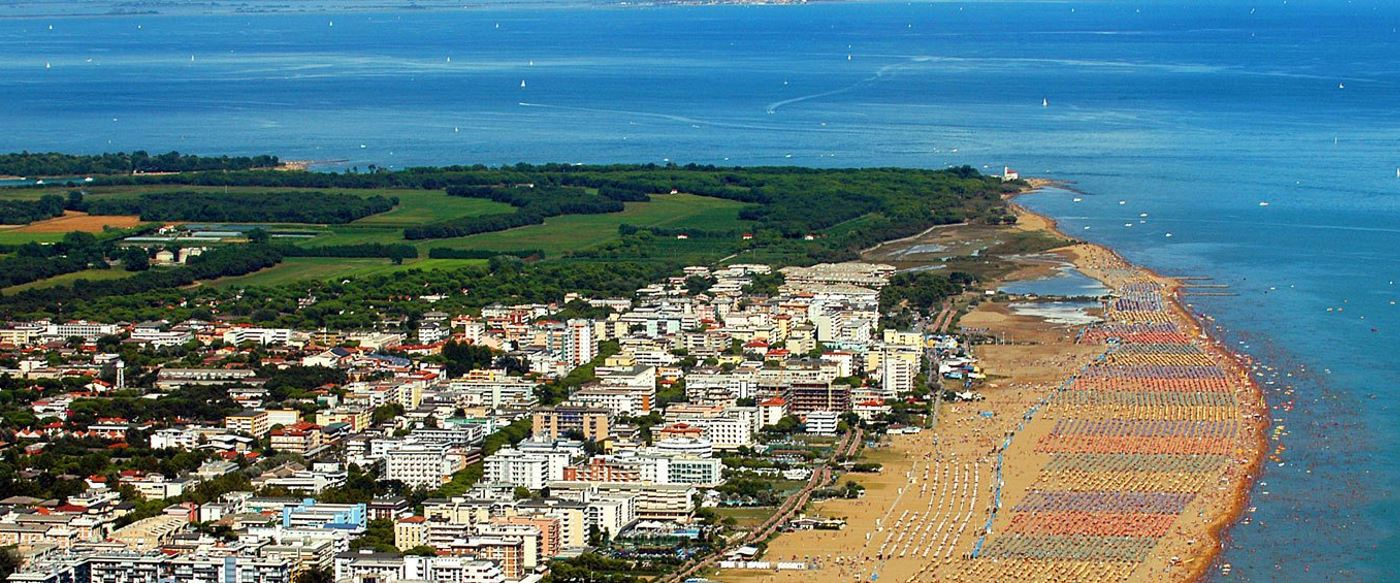 bibione modificata